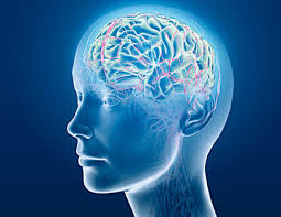 Beyni Güçlendiren Kür